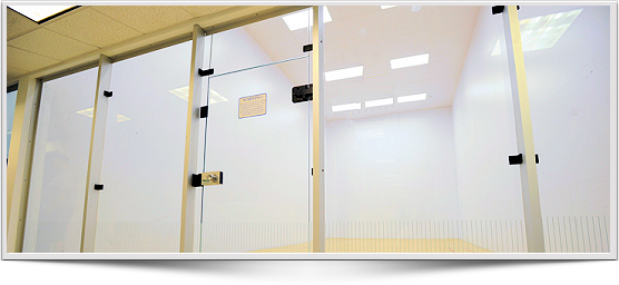 Induction Fluorescsnt and LED racquetball Lighting fixtures